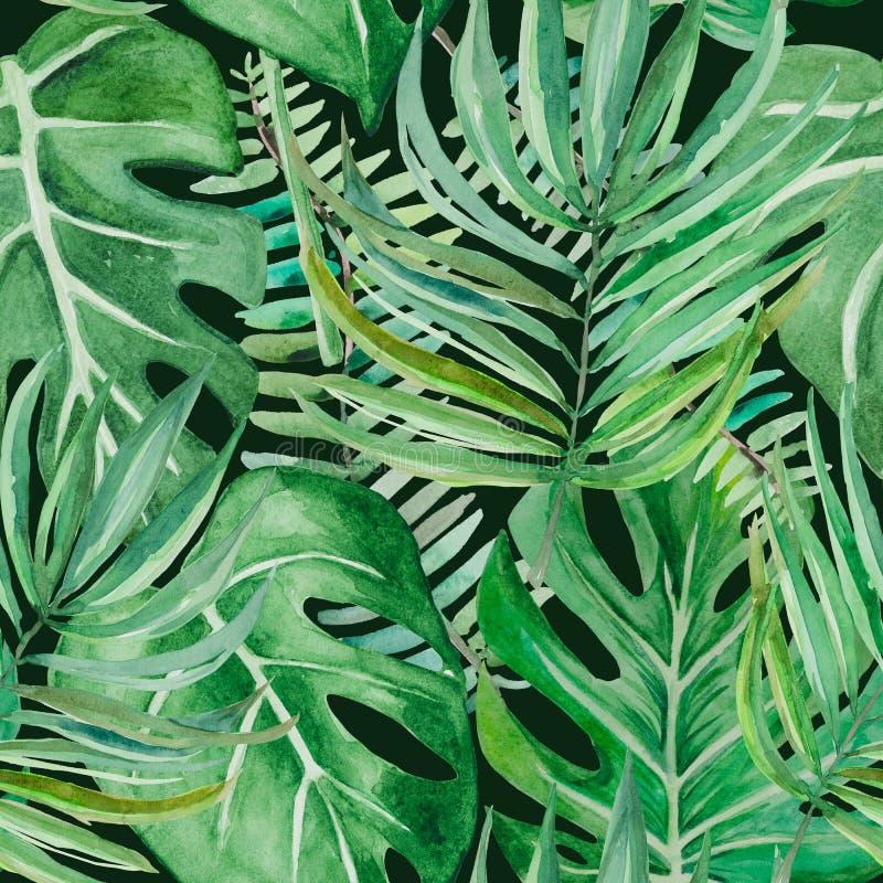 A floresta úmida no tempo nebuloso ilustração stock