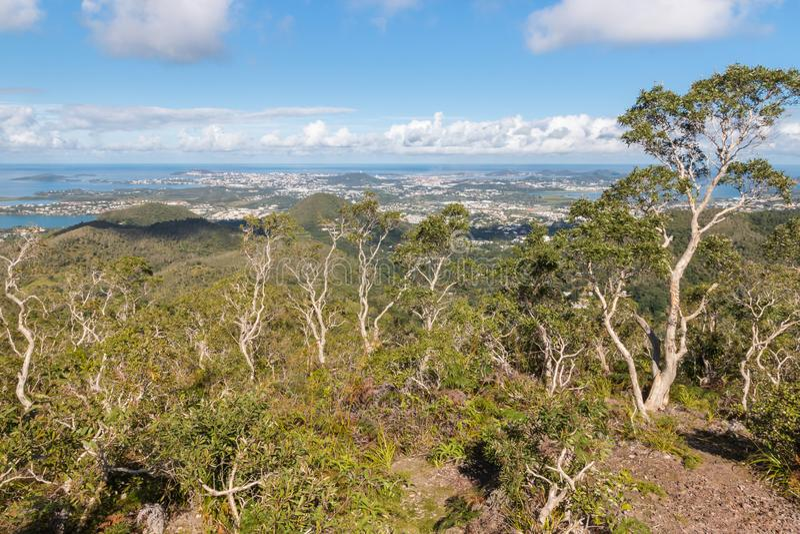 Floresta úmida tropical acima de Noumea em Nova Caledônia com céu azul imagens de stock royalty free