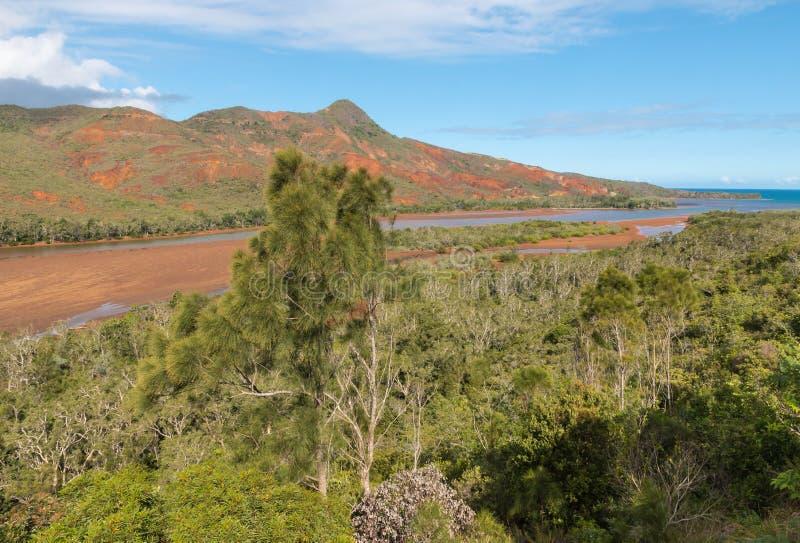 Floresta úmida tropical acima do estuário do rio dos Pirogues em Nova Caledônia foto de stock