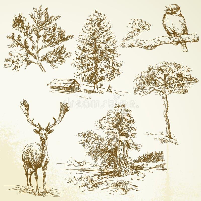 Floresta, animais, natureza ilustração royalty free