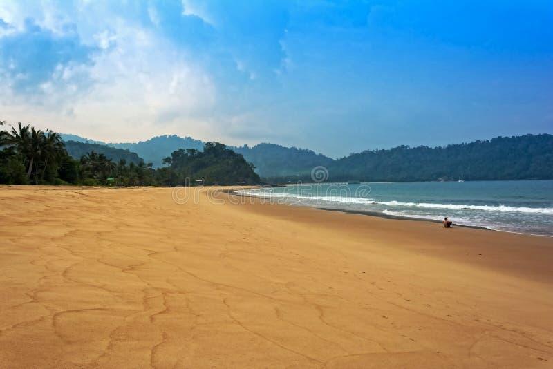Floresta, areia & mar imagem de stock royalty free