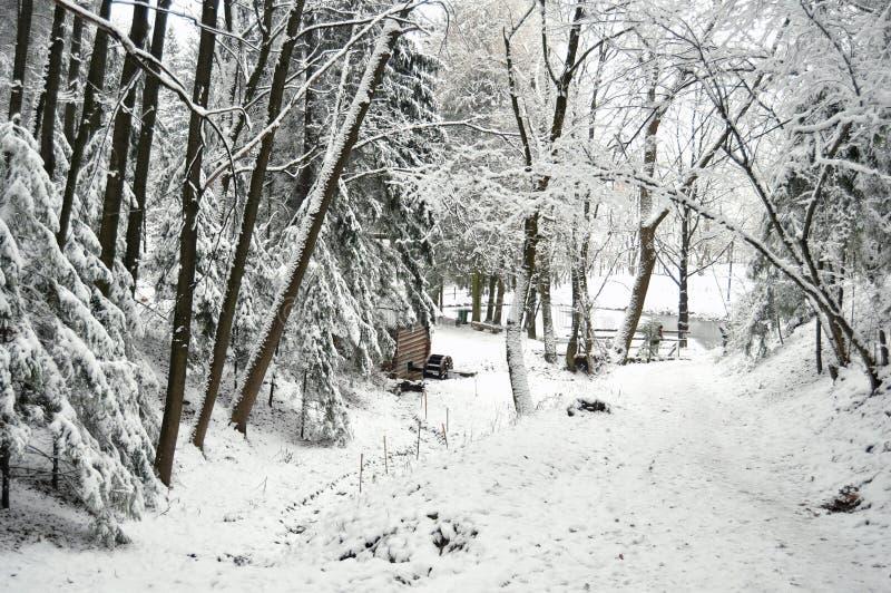 Floresta bloqueado pela neve e moinho de madeira velho no lago congelado fotos de stock