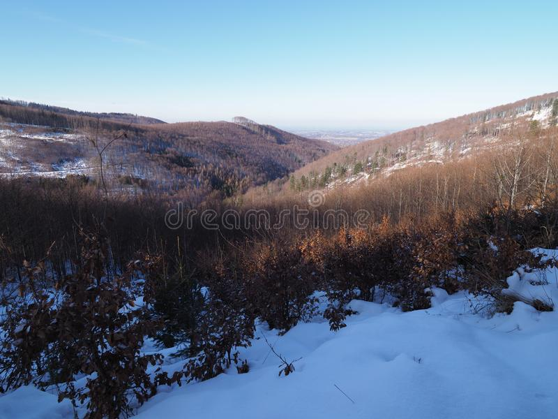 Floresta coberto de neve na paisagem da escala de montanhas de Beskid em Jaworze perto da cidade de Bielsko-Biala no Polônia foto de stock royalty free
