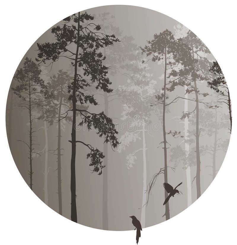 Floresta conífera ilustração stock