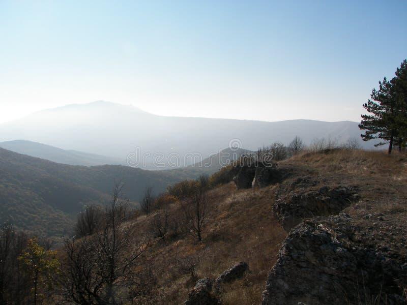 Floresta da mola na manhã nas montanhas crimeanas imagem de stock
