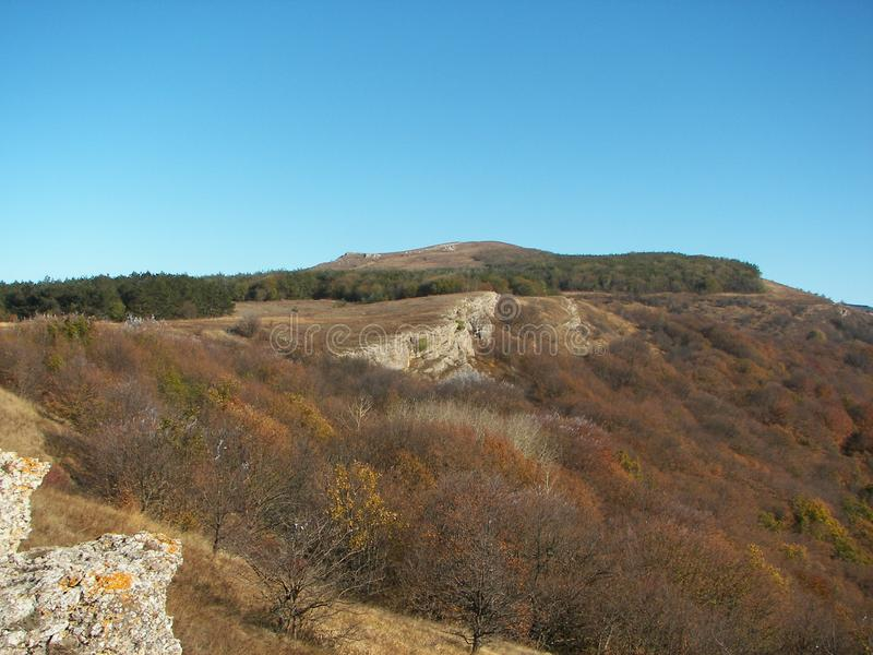 Floresta da mola na manhã nas montanhas crimeanas foto de stock royalty free