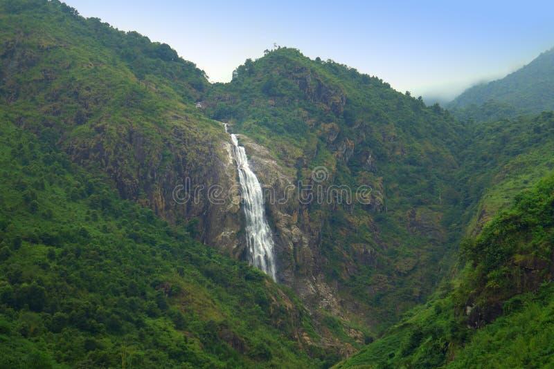 A floresta da montanha com cachoeira foto de stock