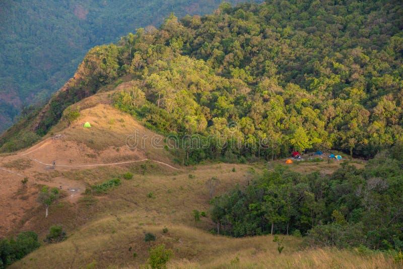 Floresta da natureza do vale da montanha da paisagem com barracas de acampamento fotografia de stock
