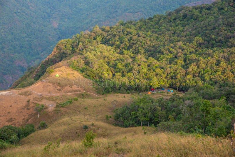 Floresta da natureza do vale da montanha da paisagem com barracas de acampamento fotos de stock