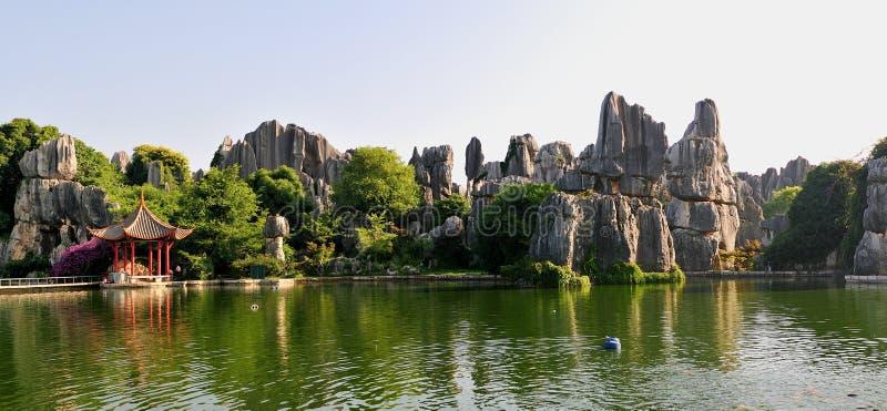 Floresta da pedra de China foto de stock royalty free