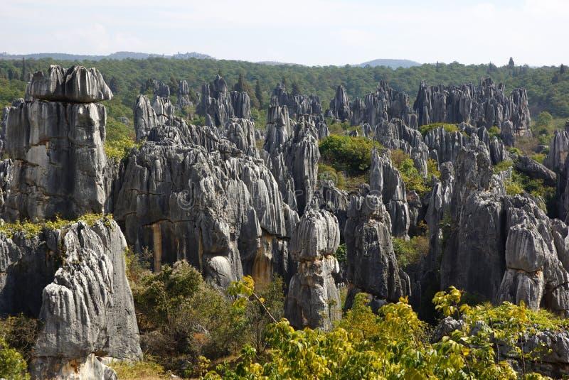 Floresta da pedra de Shilin em Kunming, Yunnan, China imagem de stock