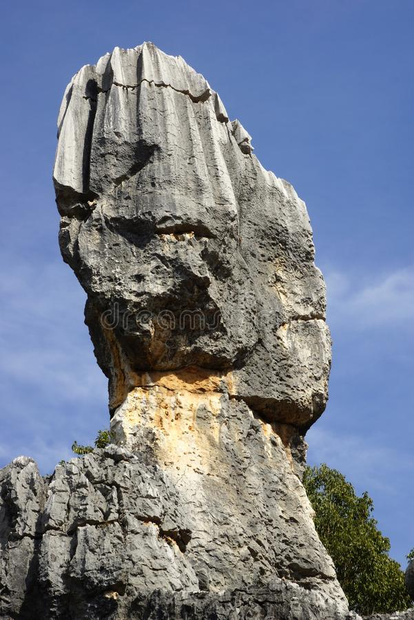 Floresta da pedra de Shilin em Kunming, Yunnan, China imagem de stock royalty free