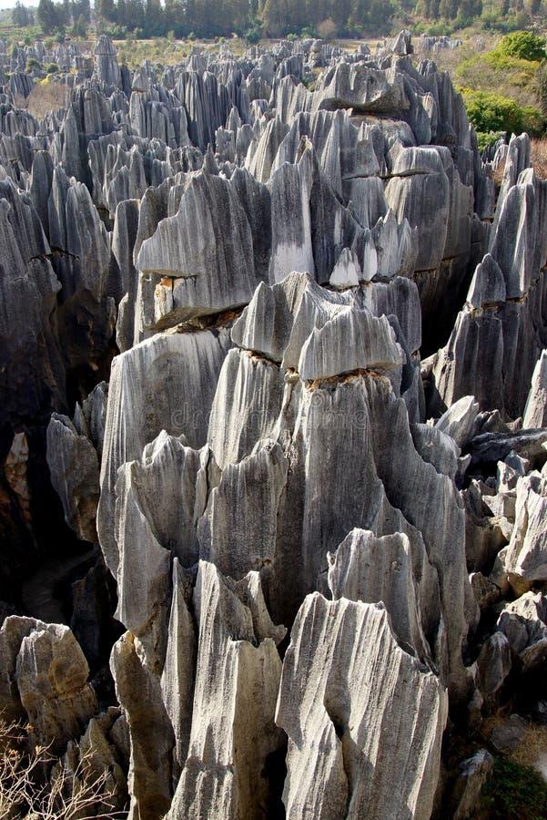 Floresta da pedra de Shilin em Kunming, Yunnan, China imagens de stock