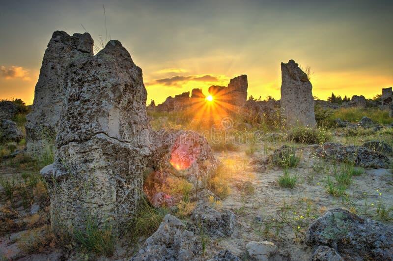 Floresta da pedra do fenômeno da natureza, kamani de Bulgária/Pobiti/ fotos de stock