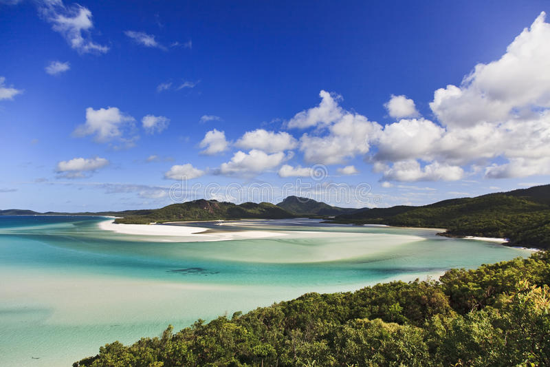 Floresta da praia do Whit de QE foto de stock