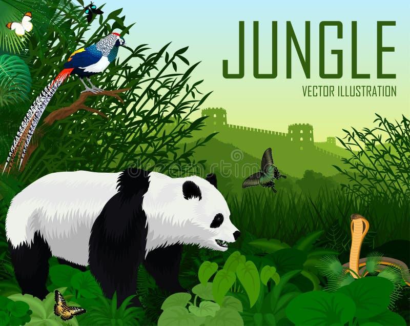Floresta da selva de China com o faisão do urso de panda gigante, da cobra e da senhora amherst do diamante ilustração royalty free