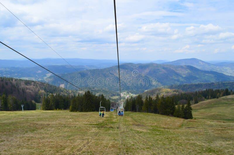 Floresta de Carpathians em maio fotos de stock royalty free