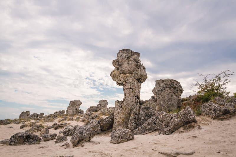 Floresta de pedra, Bulgária Pobiti Kamani fotos de stock royalty free