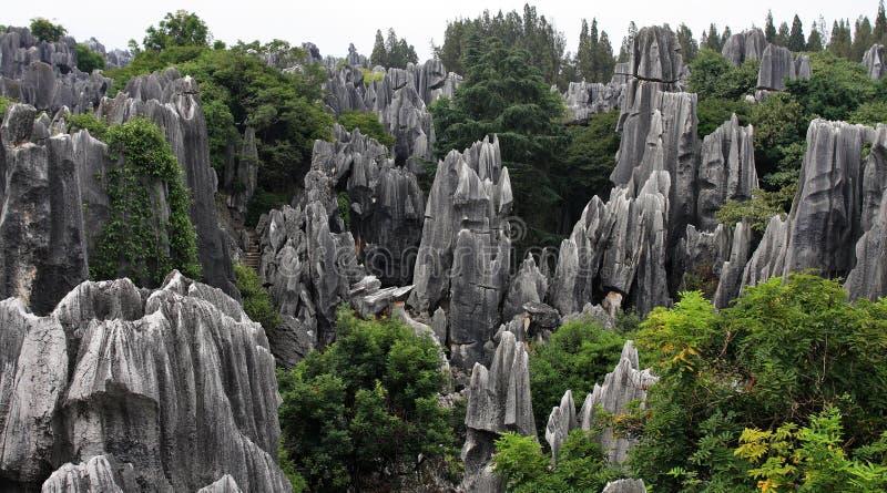 Floresta de pedra de Shilin imagens de stock royalty free