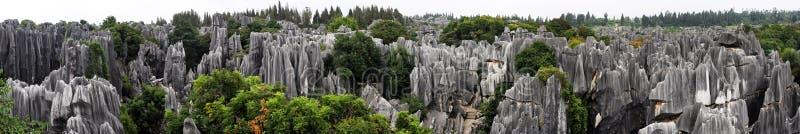 Floresta de pedra de Shilin imagem de stock royalty free