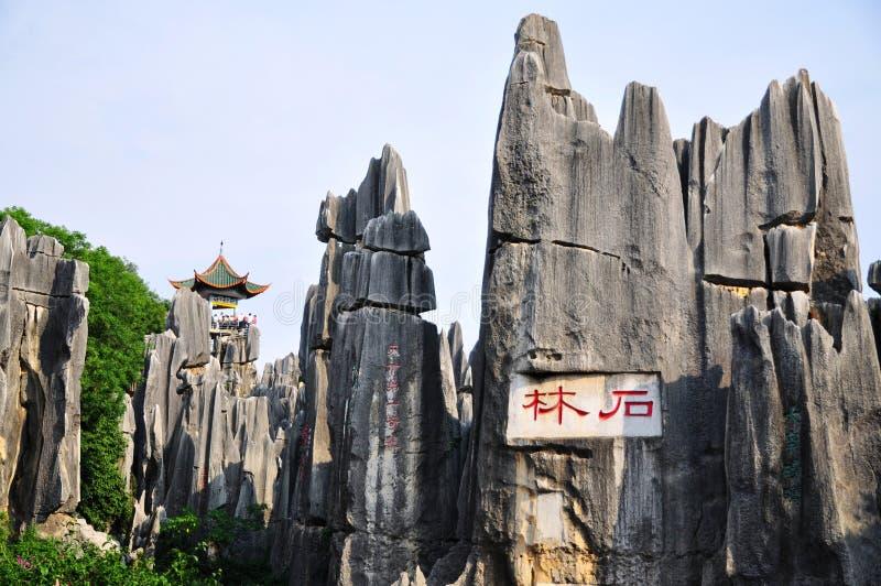 Floresta de pedra de Shilin fotografia de stock