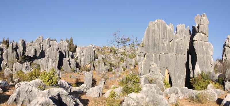 Floresta de pedra de Shilin perto de kunming yunnan fotografia de stock royalty free