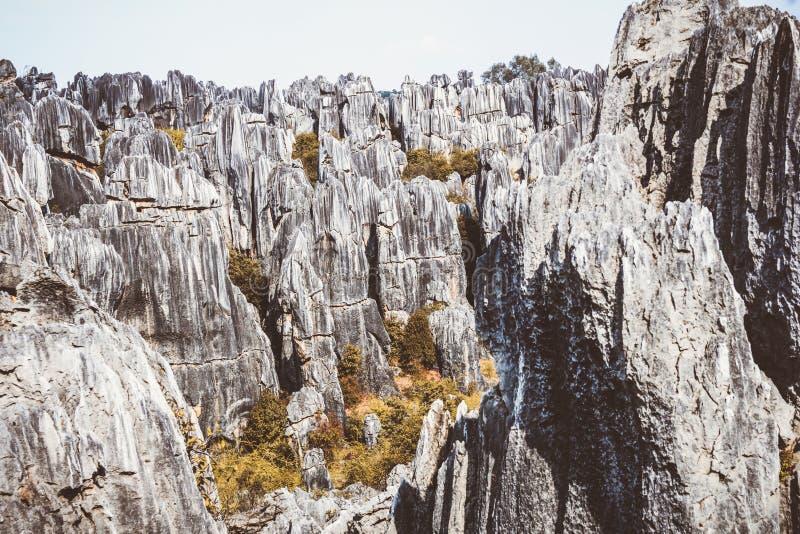 Floresta de pedra na província de Yunnan em China foto de stock