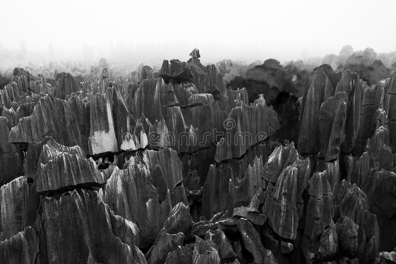 Floresta de pedra, Yunnan, China imagens de stock