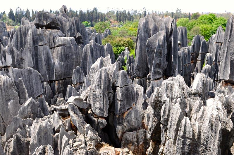 Floresta de pedra, Yunnan, China imagem de stock