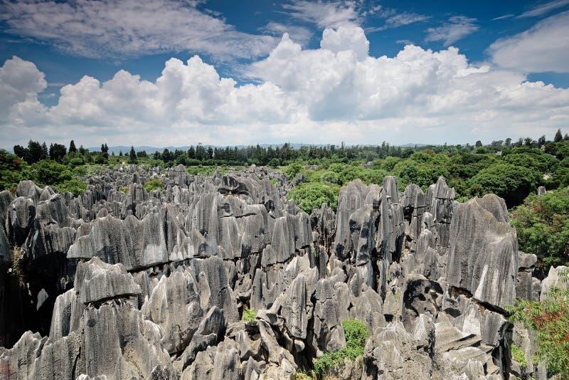 Floresta de pedra, Yunnan, China fotos de stock