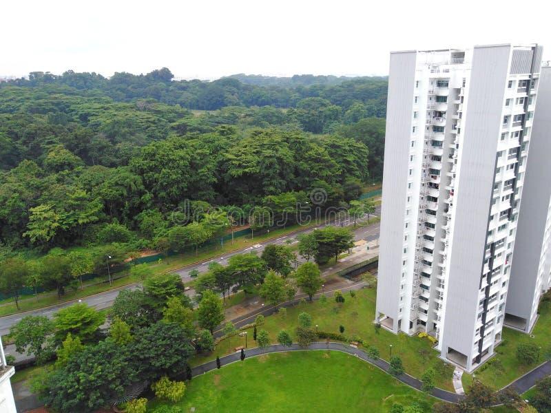 Floresta de Tengah em Singapura fotografia de stock