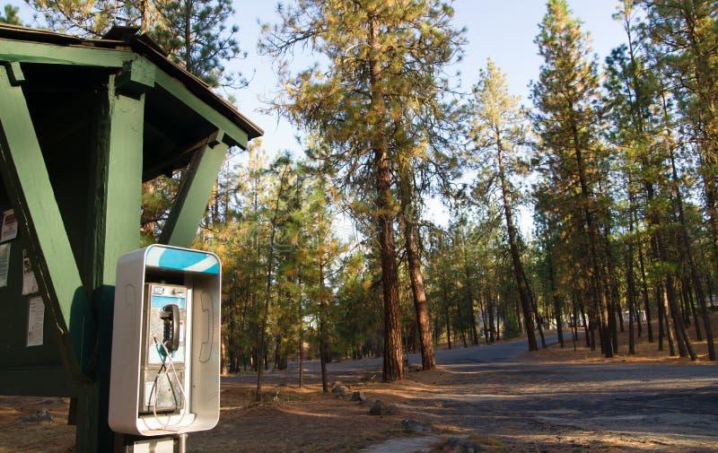 Floresta de Tone Dial Wooded Campground State da cabine de telefone do pagamento fotos de stock