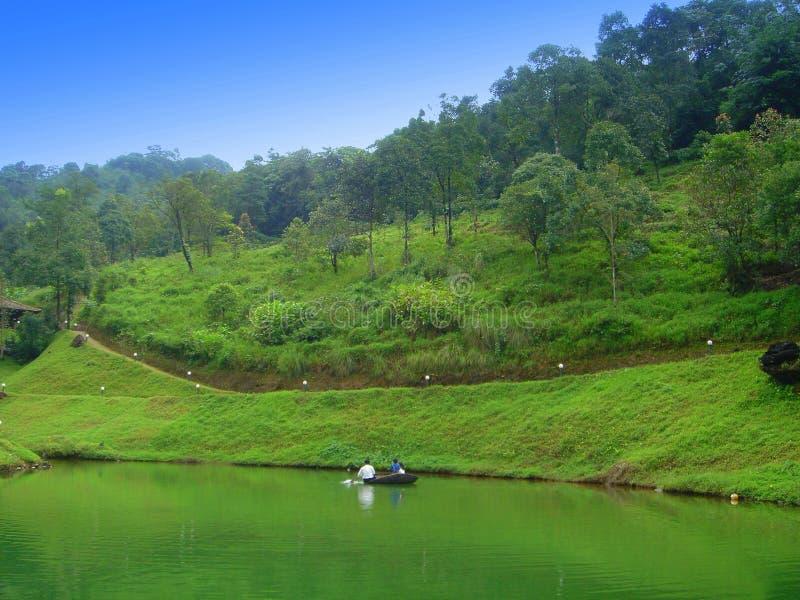 Floresta de Wyanad em sua glória como novo foto de stock