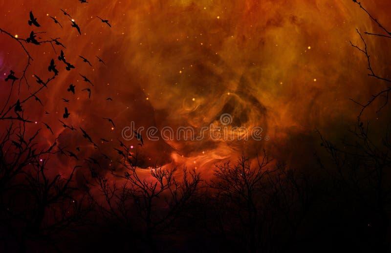 Floresta delével da silhueta no céu nocturno alaranjado fotos de stock royalty free