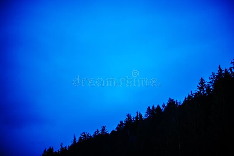 Floresta do abeto da montanha mostrada em silhueta contra o céu azul do por do sol fotografia de stock royalty free