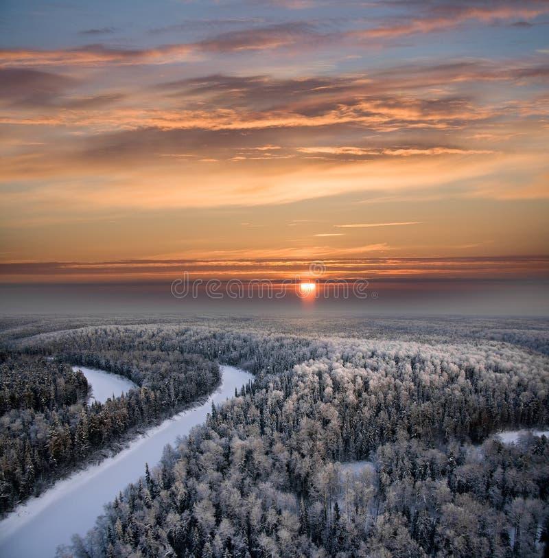 Floresta do inverno do Natal imagens de stock royalty free