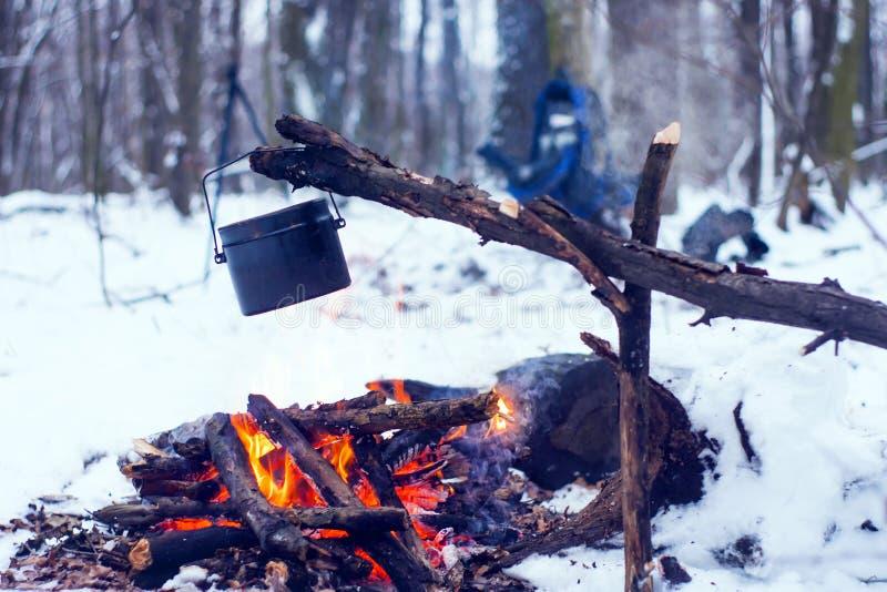 floresta do inverno, o chá morno do turista em um potenciômetro fotos de stock royalty free
