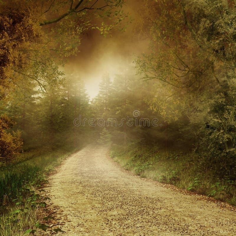 Floresta do outono ilustração royalty free