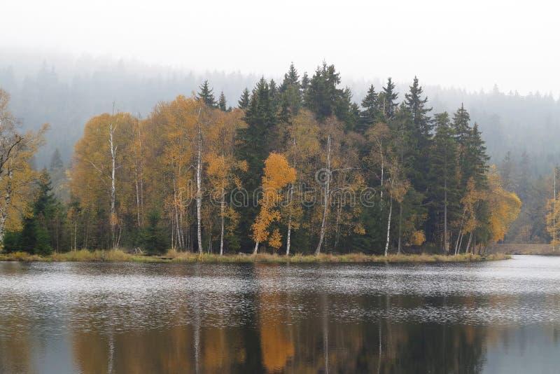 Floresta do outono nas costas do lago foto de stock royalty free