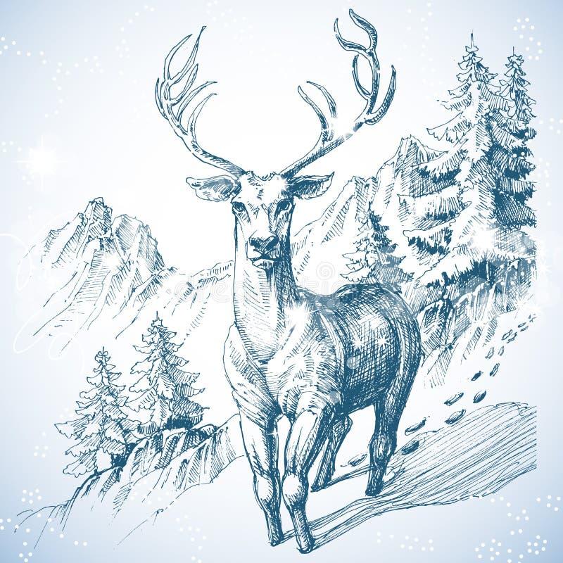 Floresta do pinheiro da montanha ilustração stock
