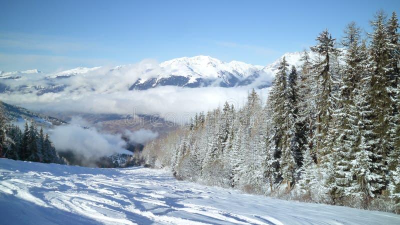 A floresta do pinho no esqui inclina-se no recurso de esqui francês dos cumes fotos de stock