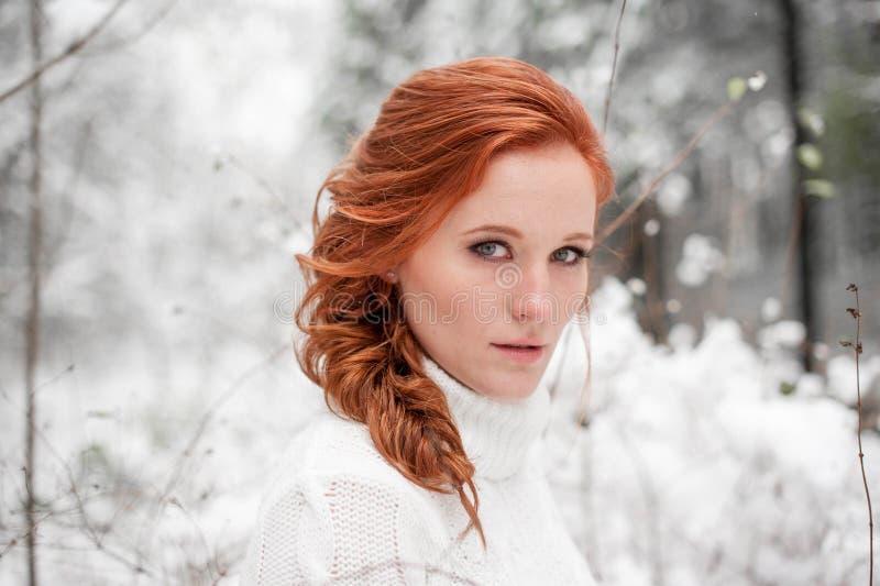 Floresta do retrato da mulher do inverno em dezembro fotografia de stock royalty free
