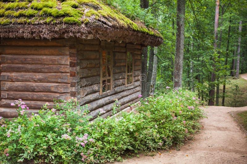Floresta do russo com a casa de madeira velha imagens de stock royalty free