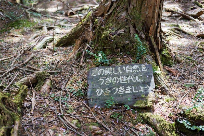 Floresta do suic?dio fotografia de stock royalty free