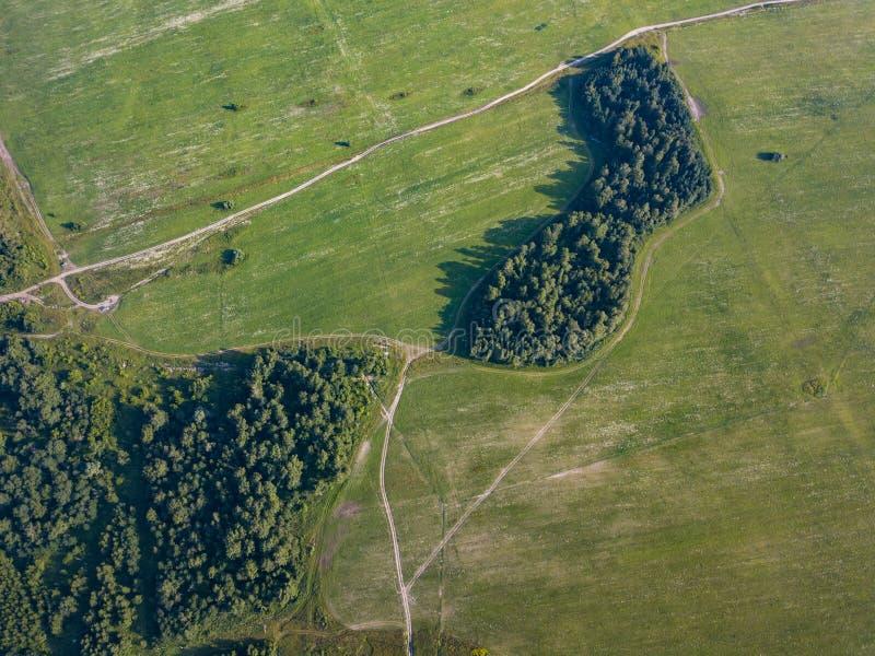 Floresta do tiro do zangão do helicóptero imagens de stock royalty free