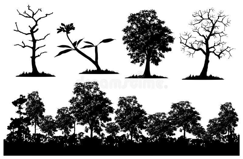 Floresta e árvore ilustração royalty free