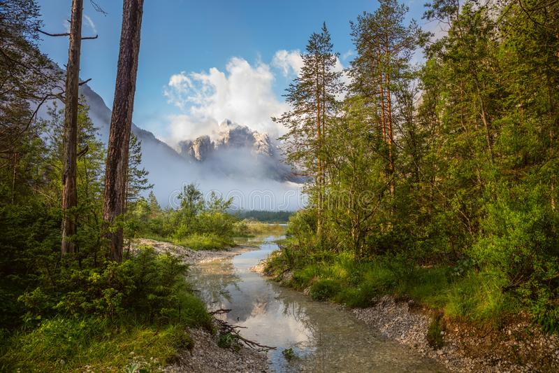 A floresta e as montanhas ajardinam, tempo ensolarado com névoa e rio imagens de stock royalty free