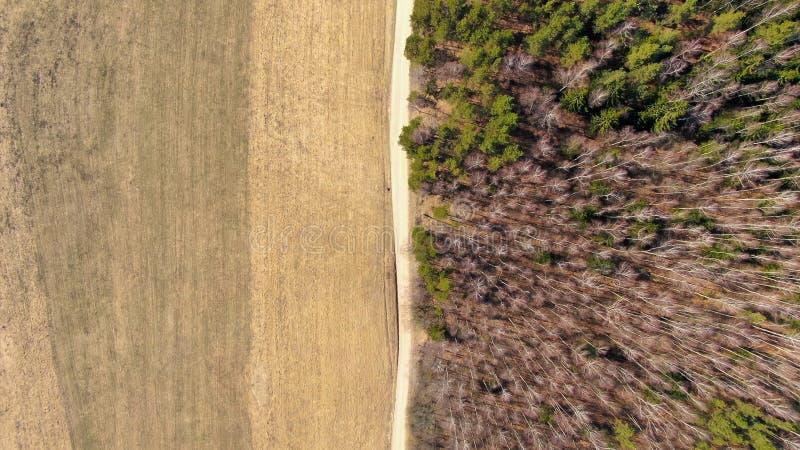 Floresta e campo separados por uma estrada imagens de stock