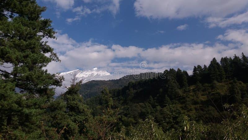 Floresta e montanha tampada neve foto de stock