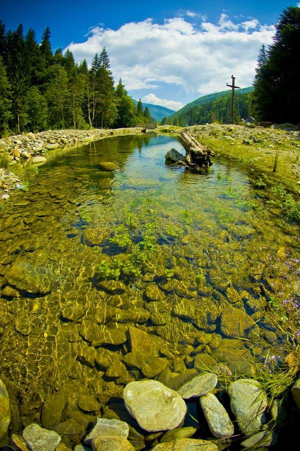 Floresta e rio fotos de stock royalty free